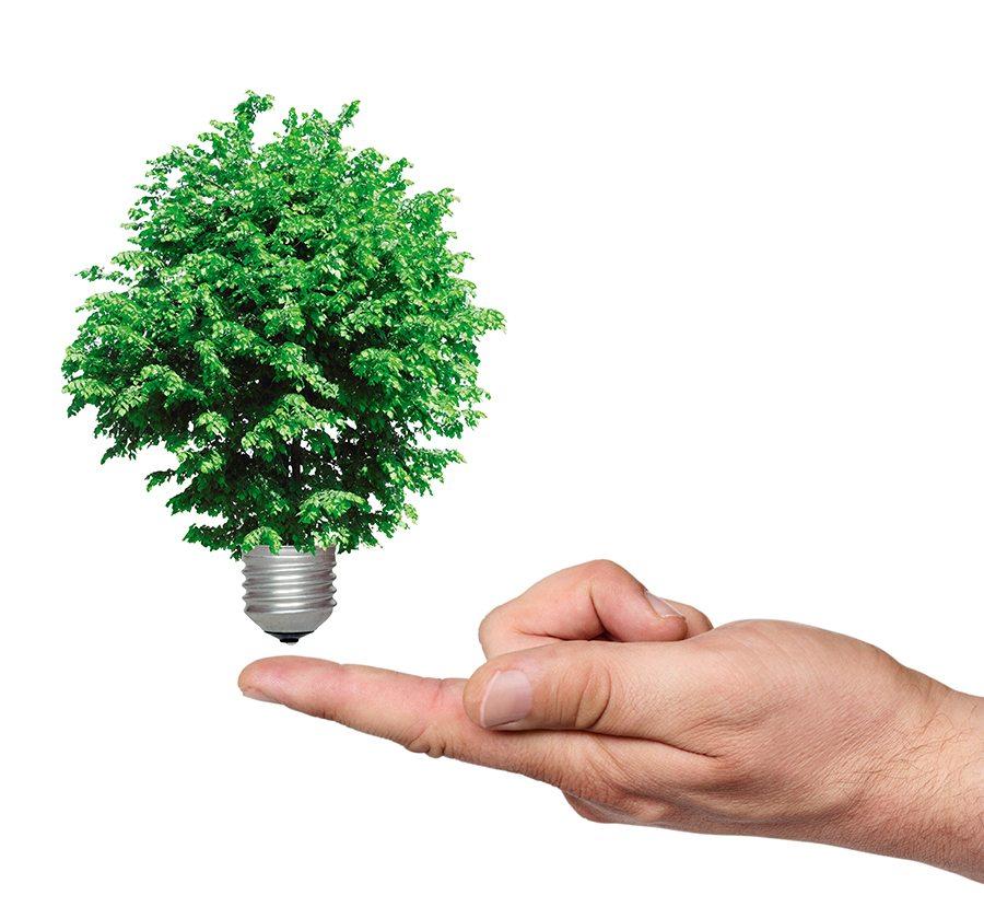 ESPECIALES  | ENERGÍA ALTERNATIVA. SOSTENIBILIDAD